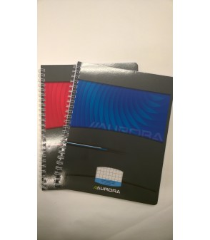 Cahier Spirales Mano 5mm A5